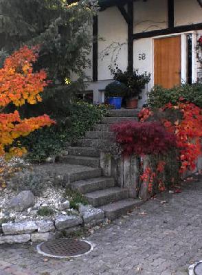 Nach Norm und Gesetz müssen Treppen - Innen und Aussen - einen Handlauf ab 4 bzw. 5 Stufen haben- hier fehlt etwas?
