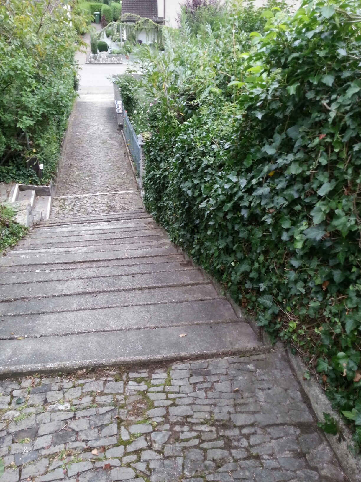 Aufgang zu einer Wohnanlage - Stockwerkseigentümergemeinschaft - ohne Handlauf